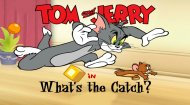 Flash Tom and Jerry Game
