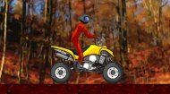 Quad Bike Racer